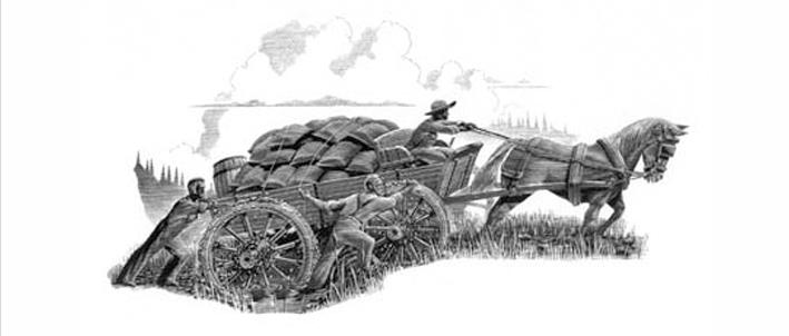 Salt Wagon illustration